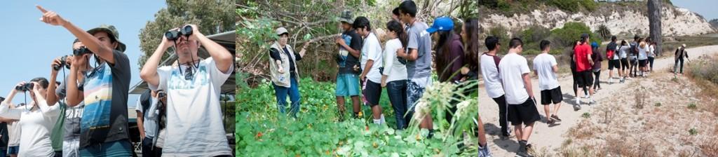 habitat walk