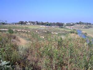 Uplands of Upper Newport Bay
